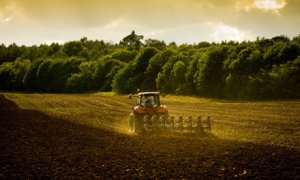 Tractor ploughing field in late summer evening sunshine
